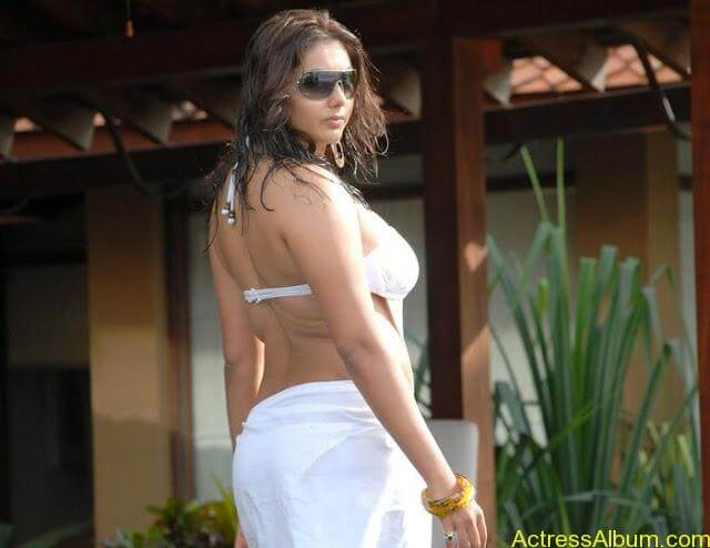 1328355799namitha-hot-sexy-bikini-photos7