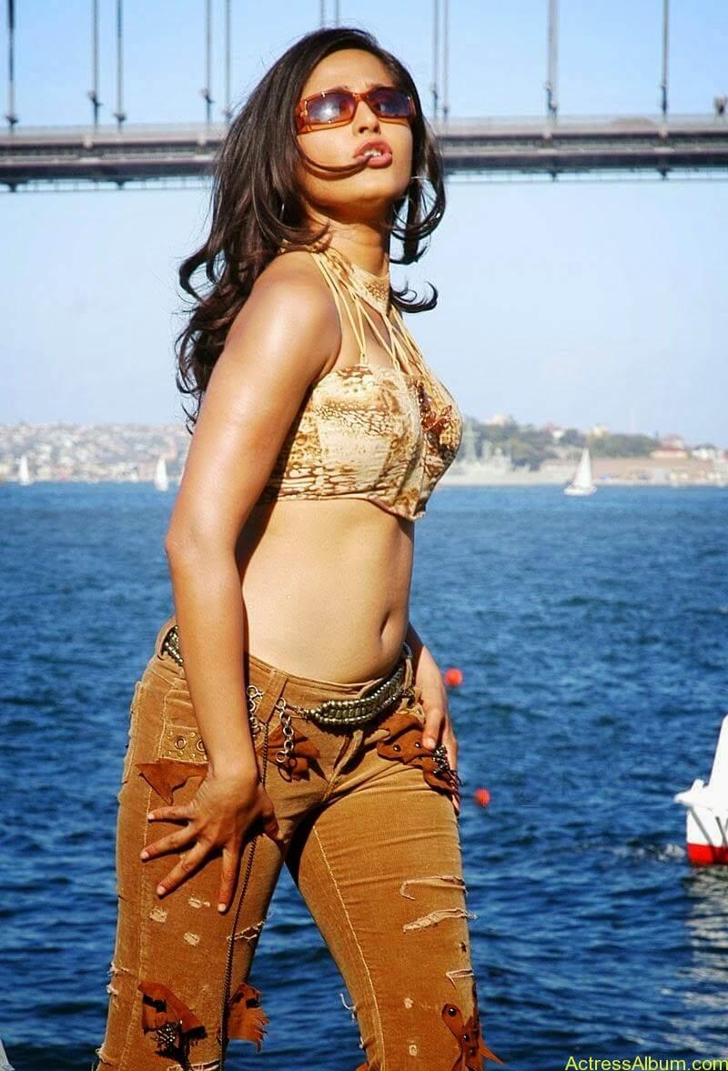 Actress Anushka Navel Show Photos 5