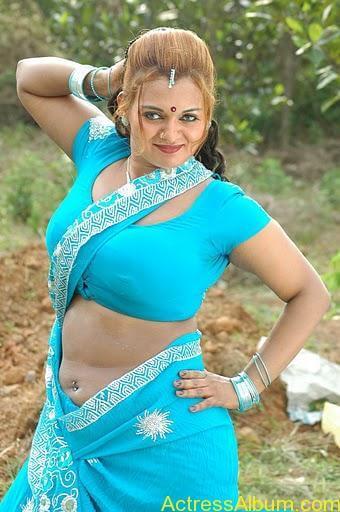 Actress bhannu Hot Blouse Show Boobs --stills55-10