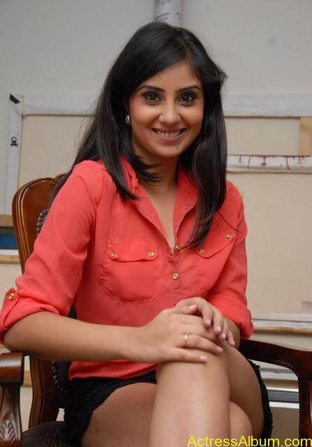 Actress Bhanu Sri Mehara Hot Images At Muse Art (11)