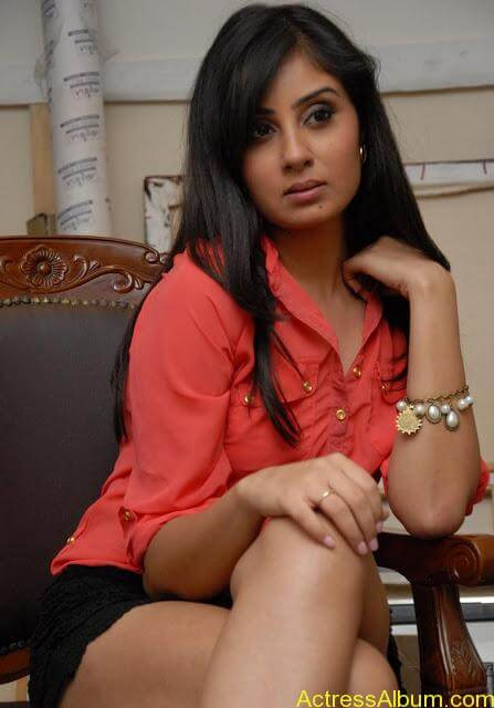 Actress Bhanu Sri Mehara Hot Images At Muse Art (14)