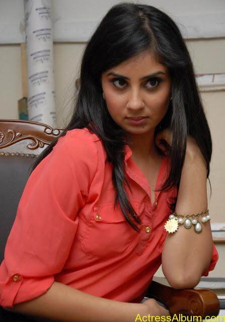 Actress Bhanu Sri Mehara Hot Images At Muse Art (15)