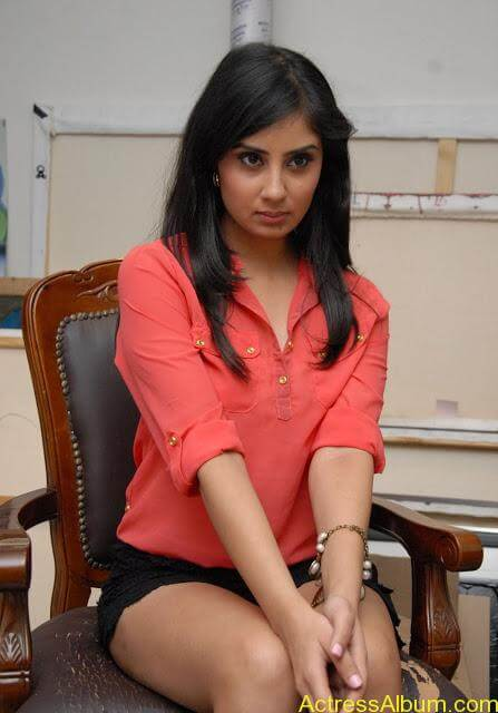 Actress Bhanu Sri Mehara Hot Images At Muse Art (16)