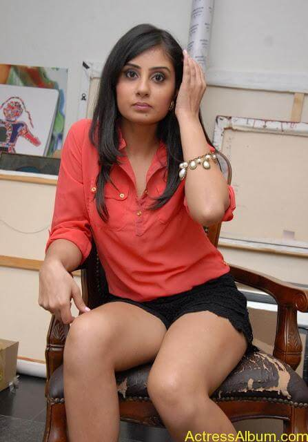 Actress Bhanu Sri Mehara Hot Images At Muse Art (17)