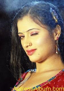 actress-navneet-kaur-sizzling-photo-gallery-hot-13