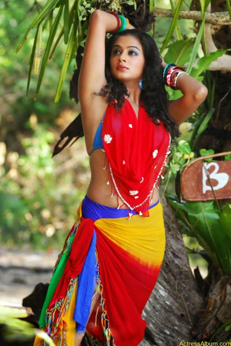 ACTRESS PRIYAMANI VERY HOT IN GOLIMAAR MOVIE PHOTOS