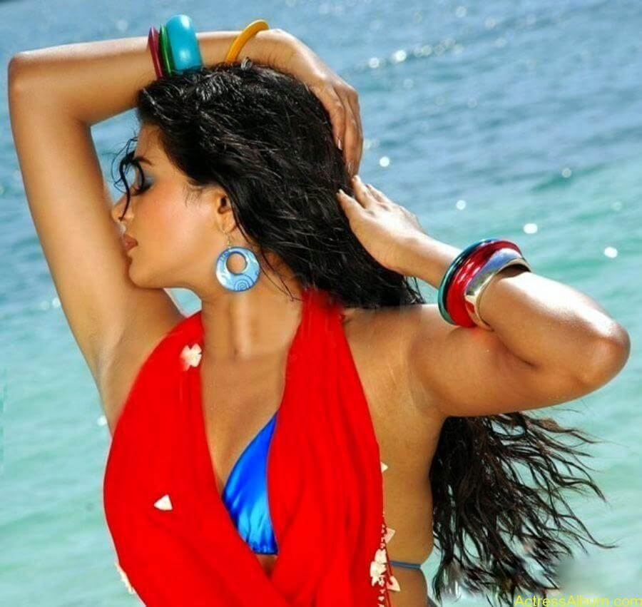 ACTRESS PRIYAMANI VERY HOT IN GOLIMAAR MOVIE PHOTOS6