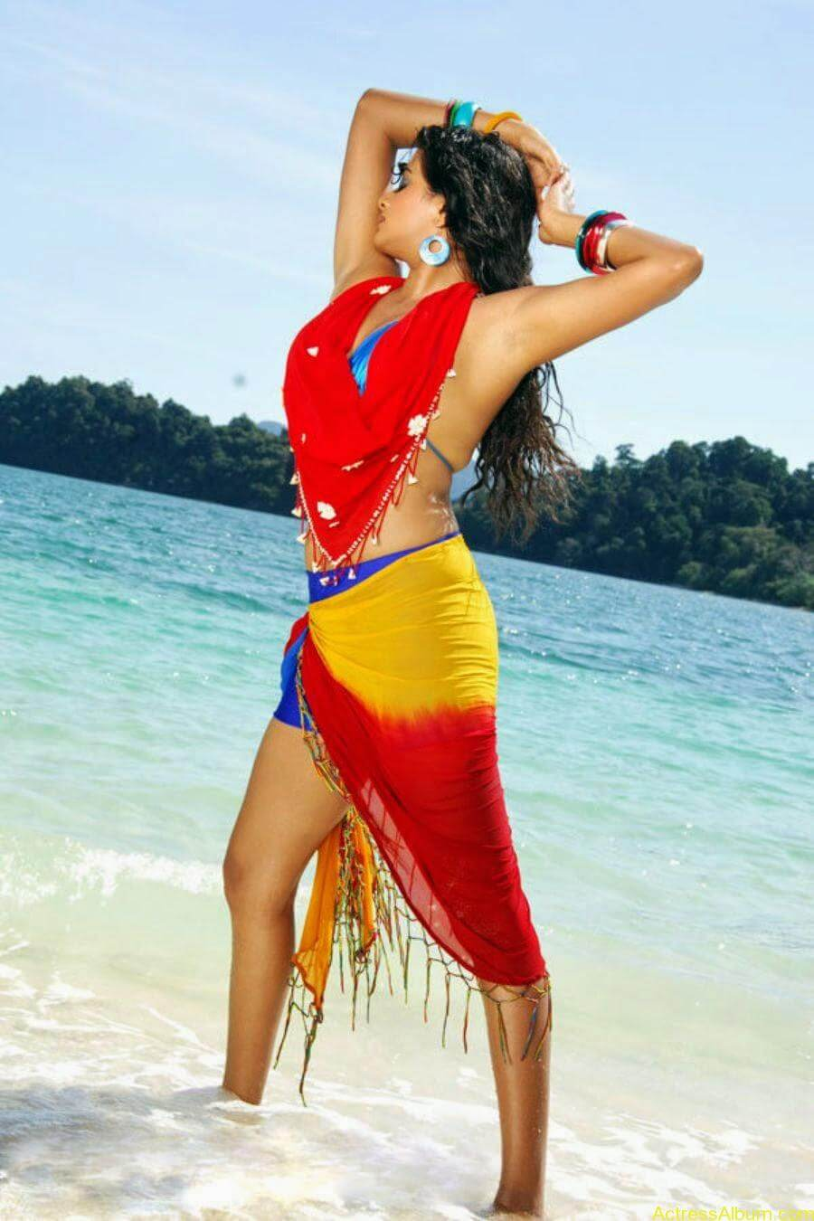 ACTRESS PRIYAMANI VERY HOT IN GOLIMAAR MOVIE PHOTOS7