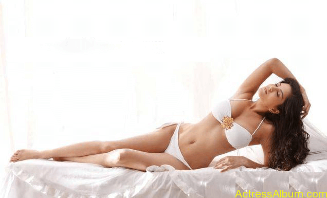 Actresses Sunny Leone hot & spicy image 03