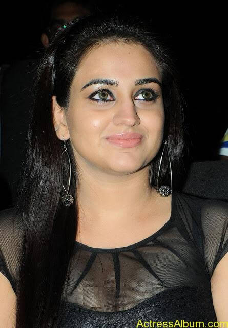 Aksha At Satruvu Audio Pics (10)