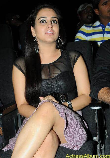 Aksha At Satruvu Audio Pics (7)