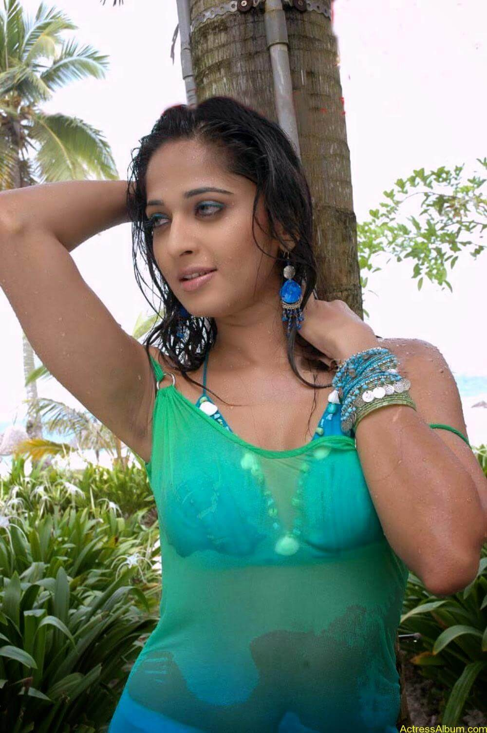 ANUSHKA SHETTY WET SPICY PHOTO COLLECTION1
