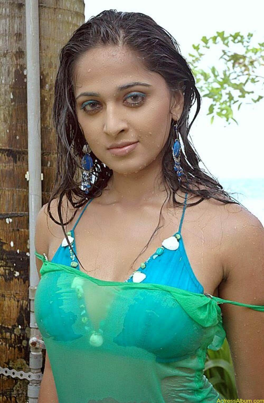 ANUSHKA SHETTY WET SPICY PHOTO COLLECTION4