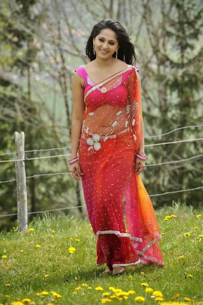 anushka_new_Spicy_navel_show_in_transparent_saree (11)