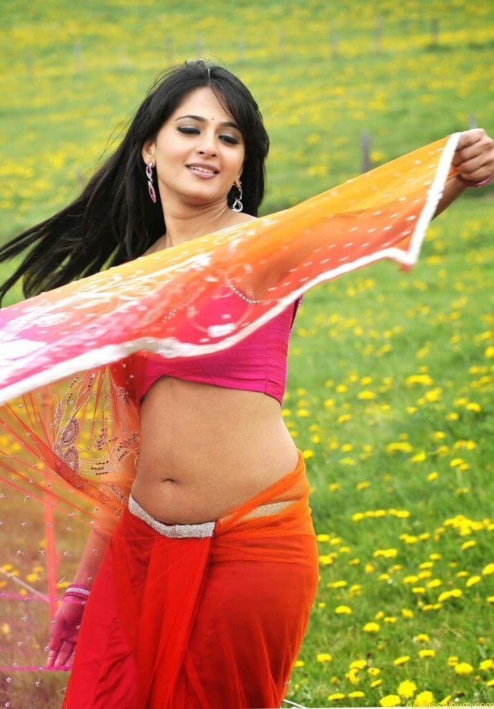 anushka_new_Spicy_navel_show_in_transparent_saree (13)