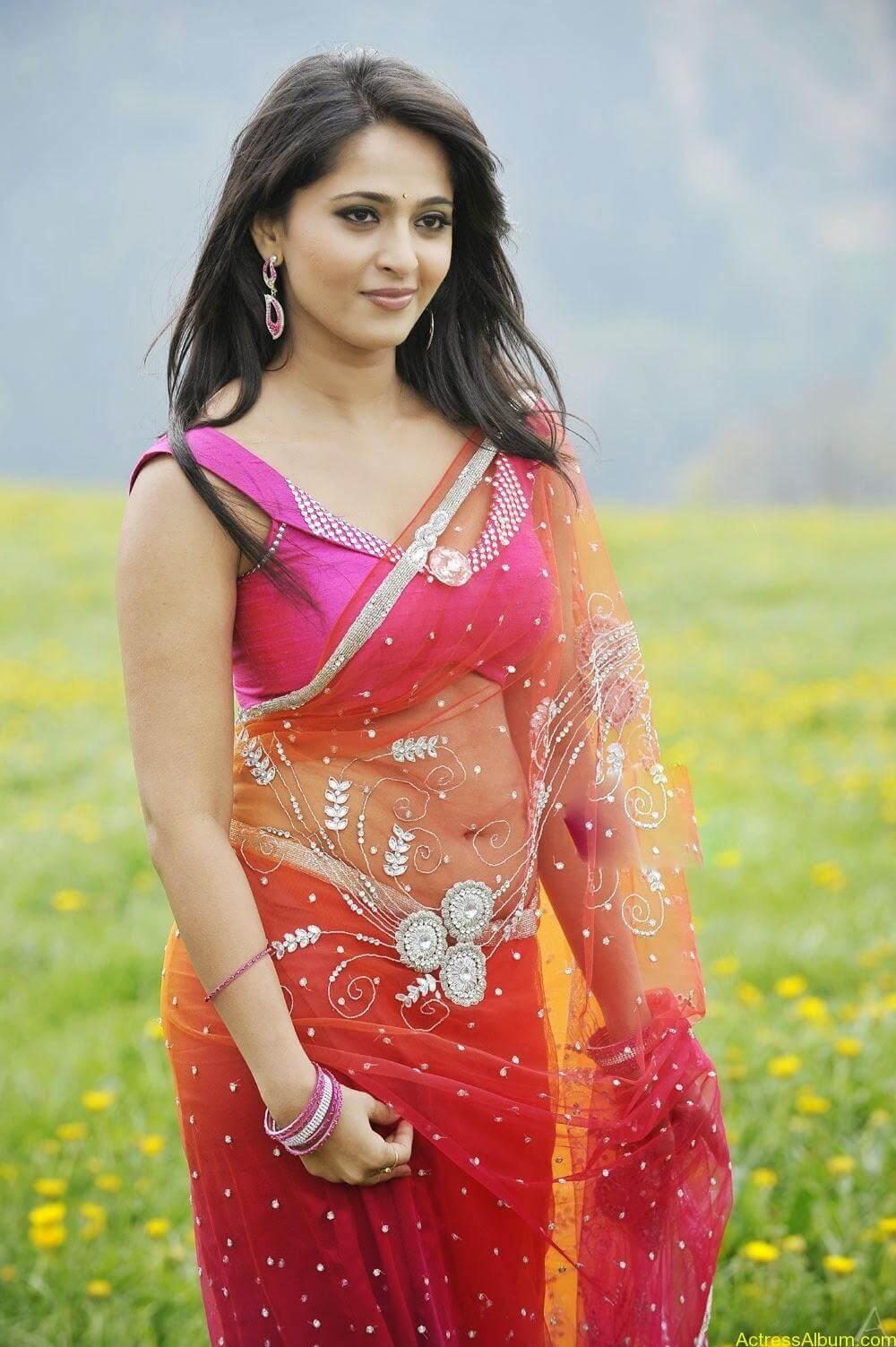 anushka_new_Spicy_navel_show_in_transparent_saree (3)