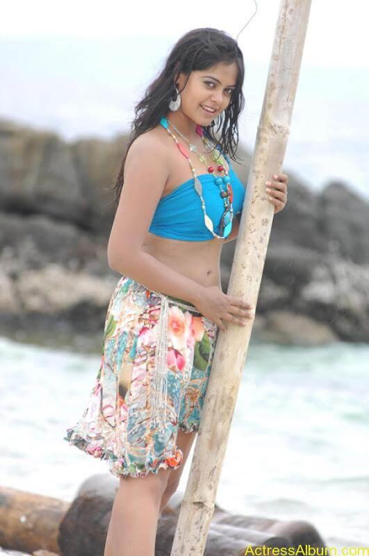 Bindhu Madhavi in Bikini (12)