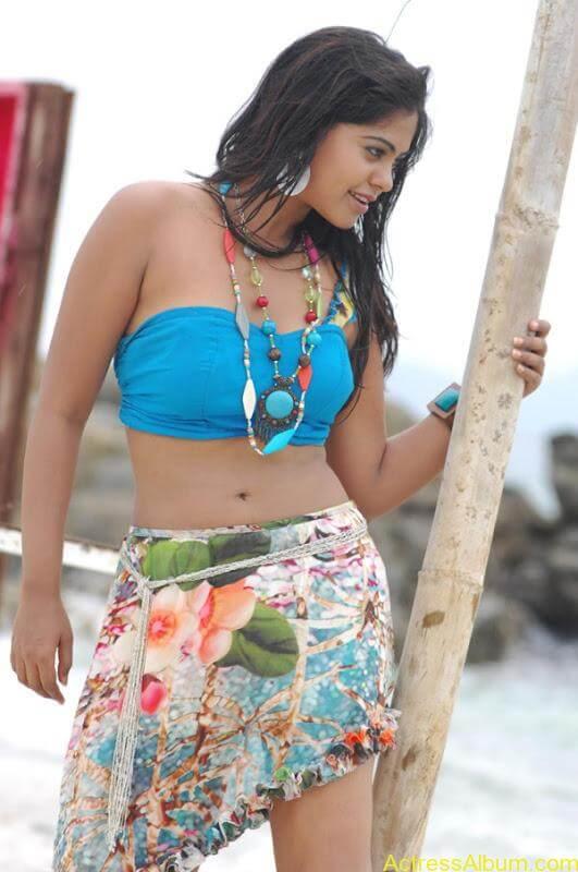 Bindhu Madhavi in Bikini (13)