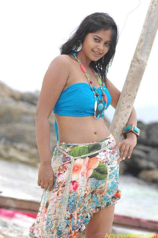 Bindhu Madhavi in Bikini (14)