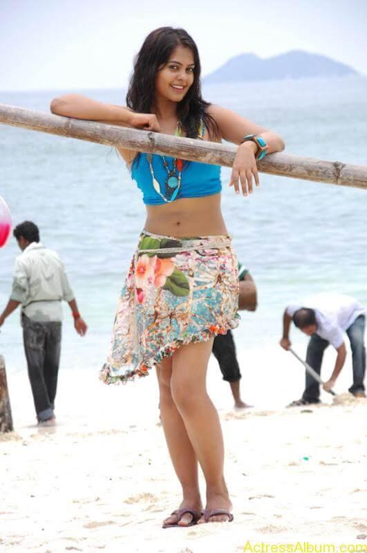 Bindhu Madhavi in Bikini (5)