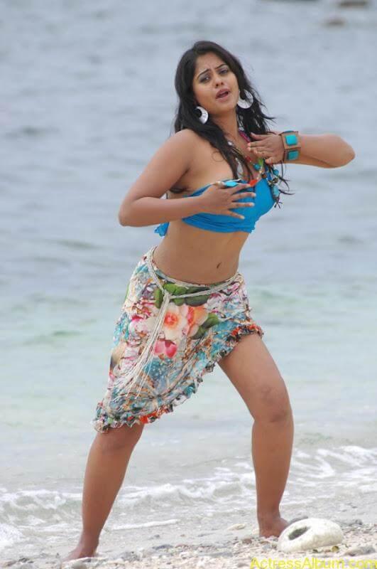 Bindhu Madhavi in Bikini (7)