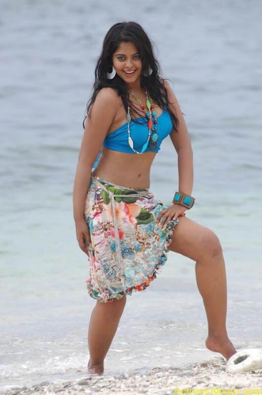 Bindhu Madhavi in Bikini (8)