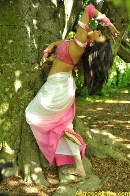 Kajal Agarwal Deep Sexy HD Navel In Pink Saree From Veera 3