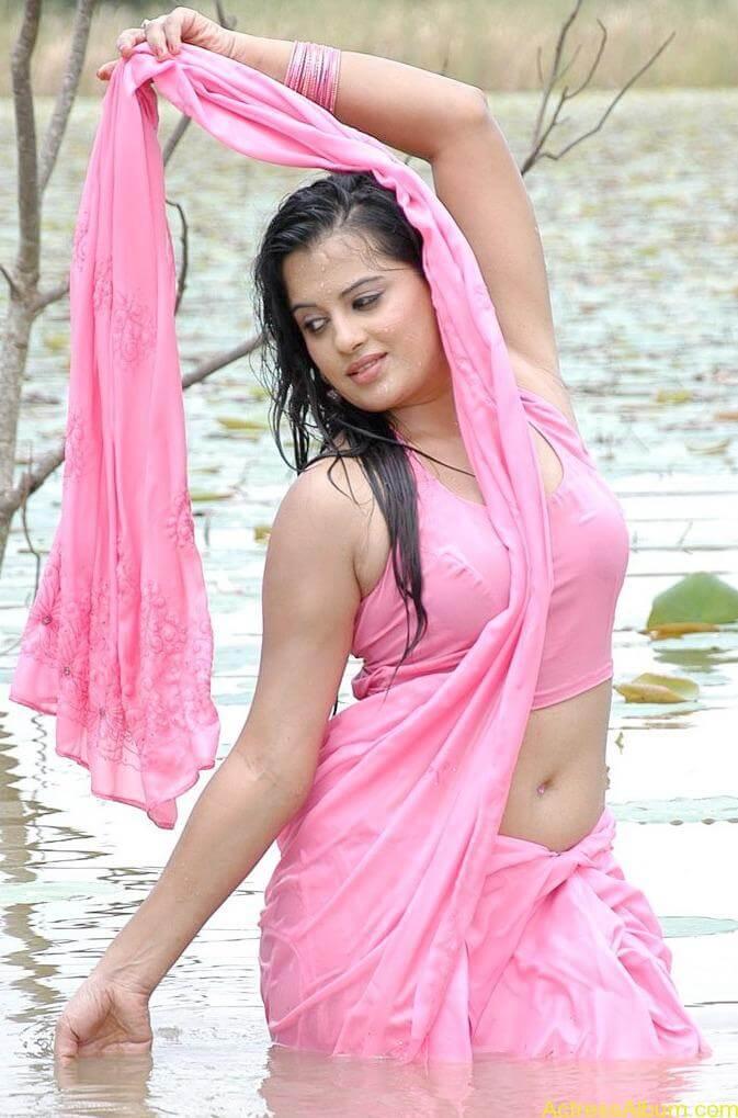 Kannada Actress Roopa Hot Navel Photos in Saree 1