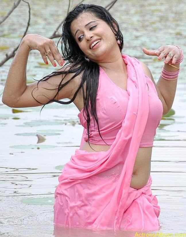 Kannada Actress Roopa Hot Navel Photos in Saree 2 (1)