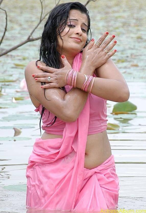 Kannada Actress Roopa Hot Navel Photos in Saree 4