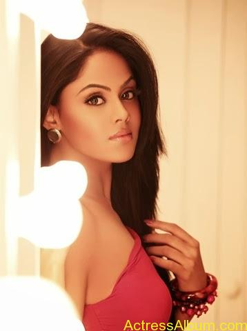Karthika Nair Hot Photo Shoot Pics (1)