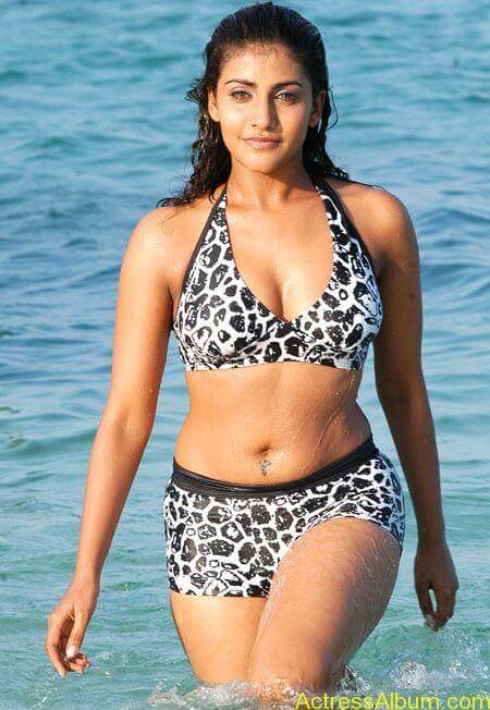 kausha hot in bikini (2)