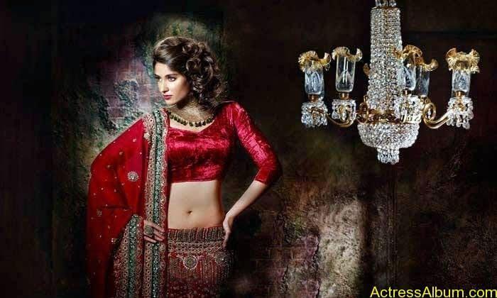 latest Ileana hot saree photoshoot latest stills (5)