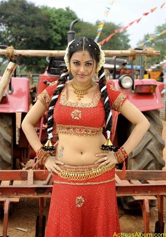 Meenakshi hot tamil masala actress exposing her hot deep navel