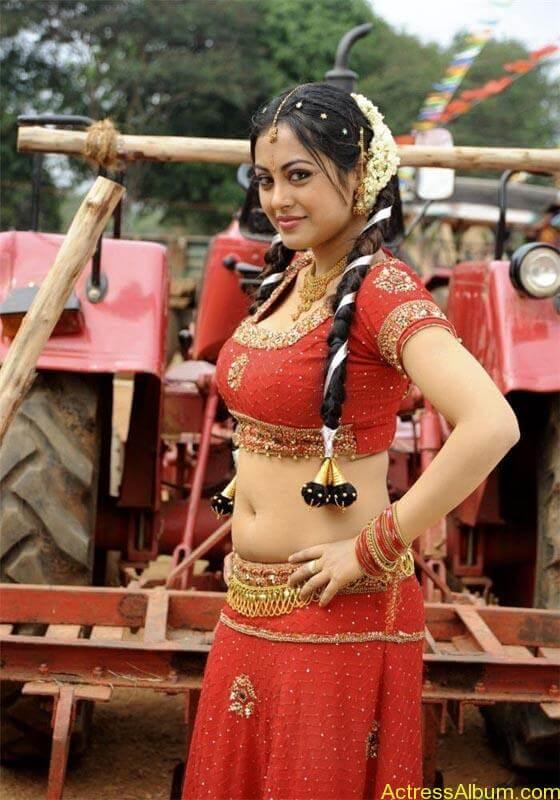 Meenakshi hot tamil masala actress exposing her hot deep navel1