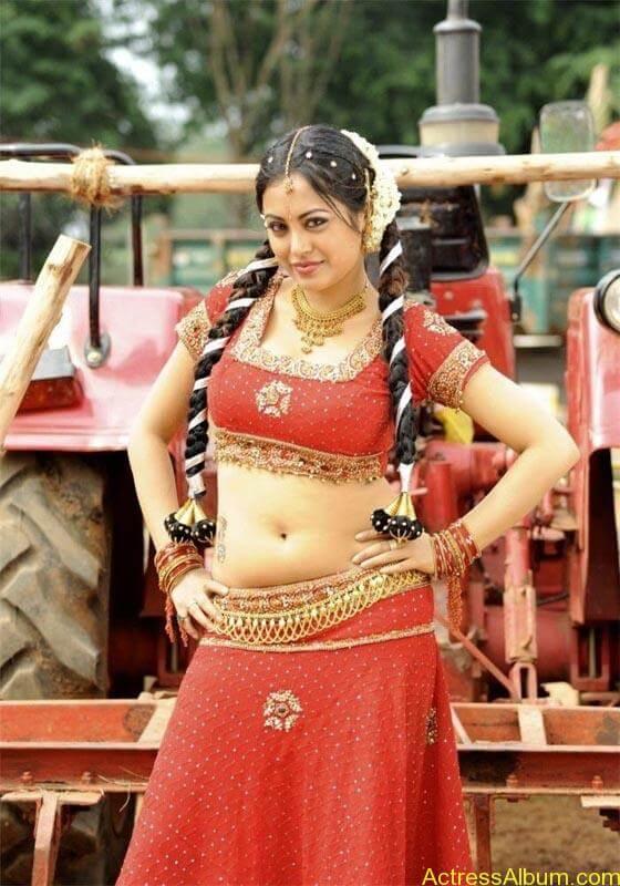 Meenakshi hot tamil masala actress exposing her hot deep navel4