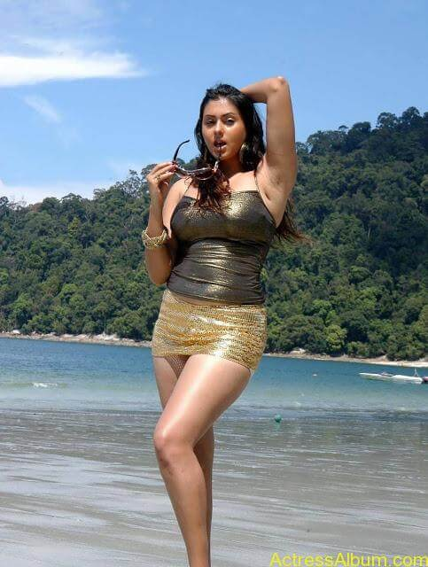 namitha_hot_bikini_photos-22