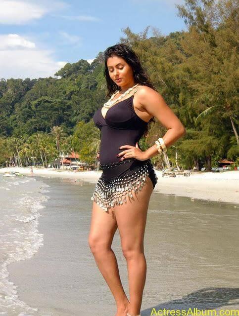 namitha_hot_bikini_photos-3