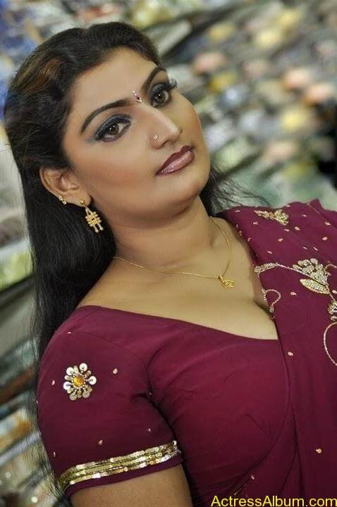 Nellai Santhippu Movie (31)