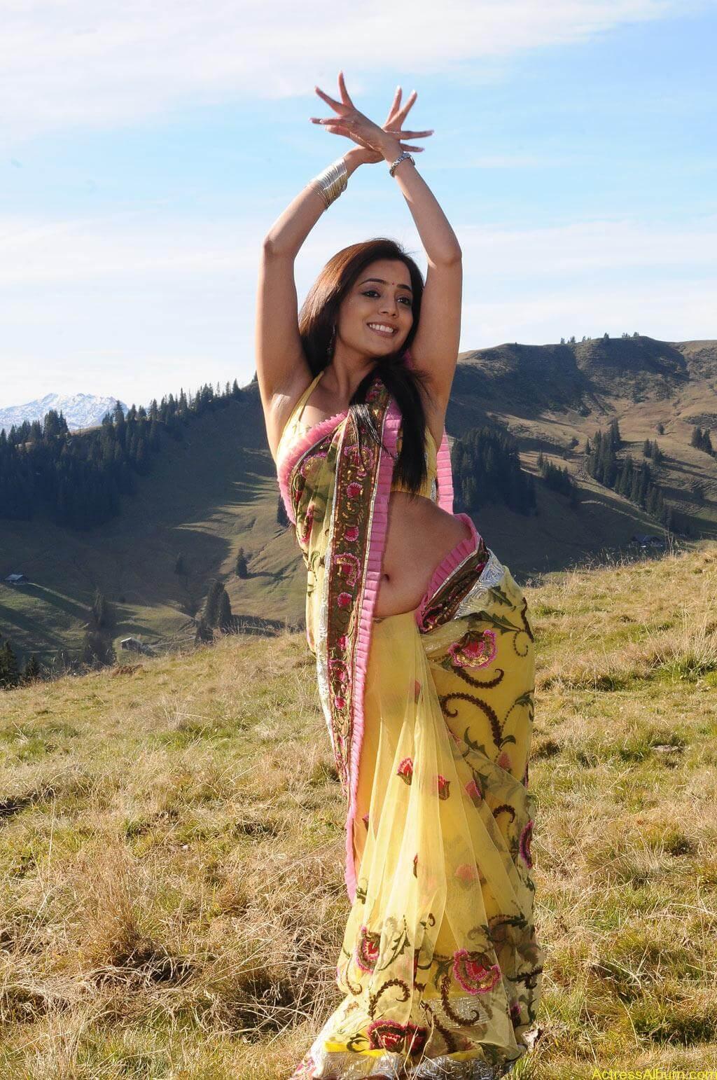 Nisha Agarwal spicy hot navel show photos