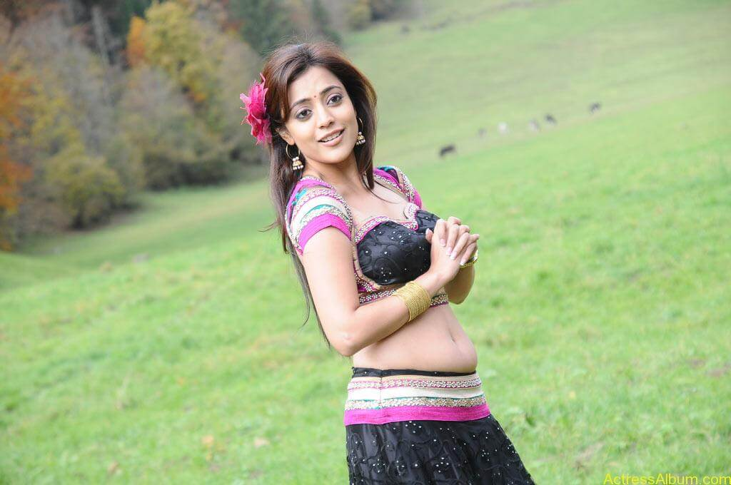 Nisha Agarwal spicy hot navel show photos2