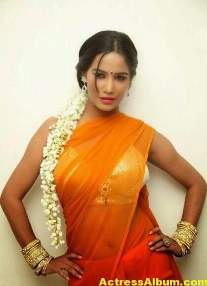 Poonam Pandey Latest Hot Saree Stills@FilmyTrend (8)