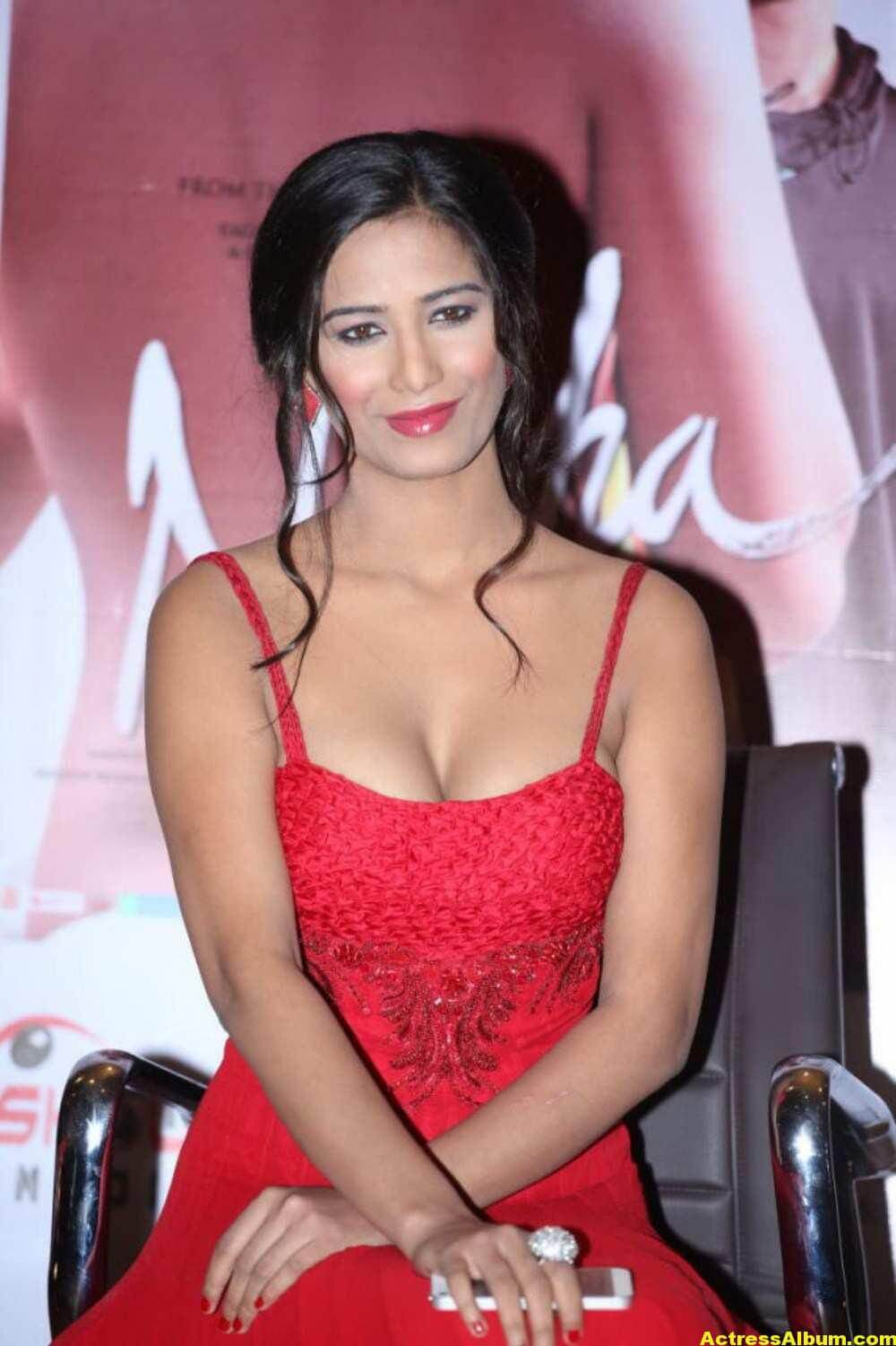 poonam pandey hot and sexy bikini photos - actress album