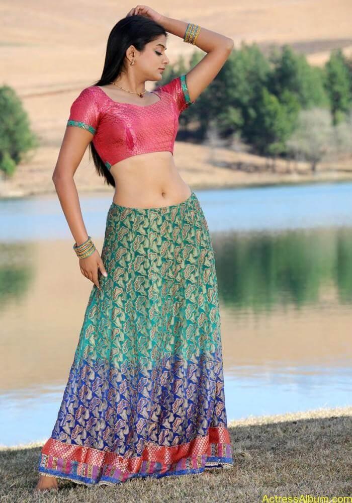 priyamani-latest-hot-exposing-navel (10)