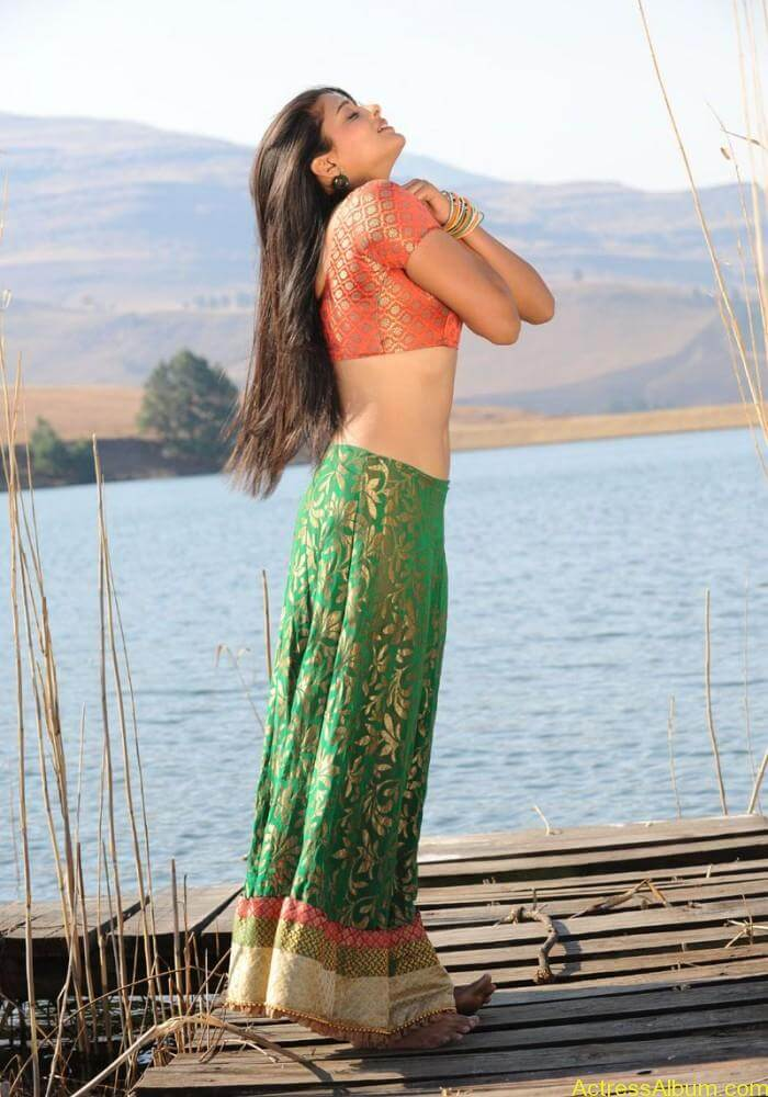 priyamani-latest-hot-exposing-navel (11)