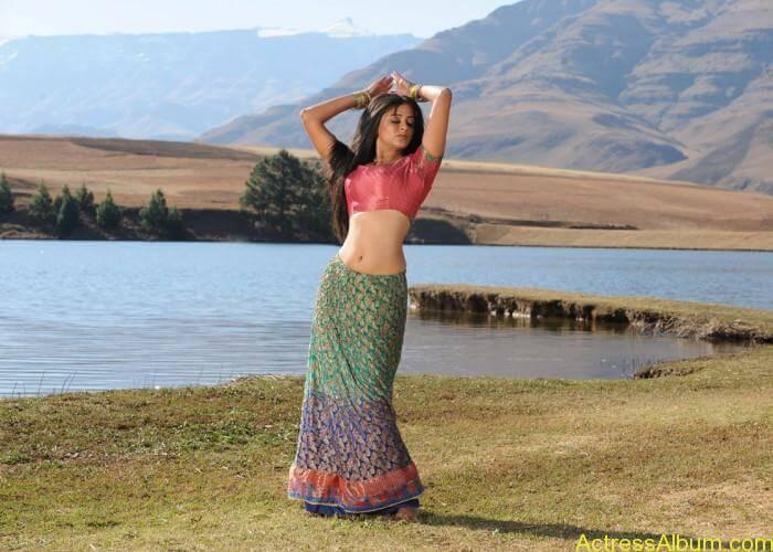 priyamani-latest-hot-exposing-navel (2)