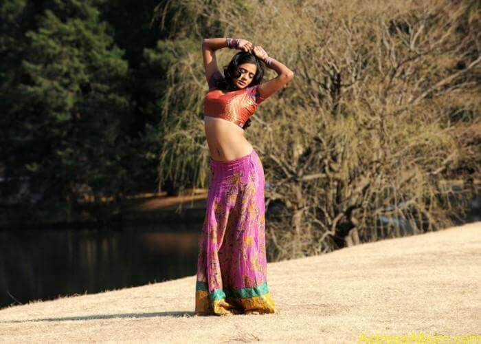 priyamani-latest-hot-exposing-navel (3)
