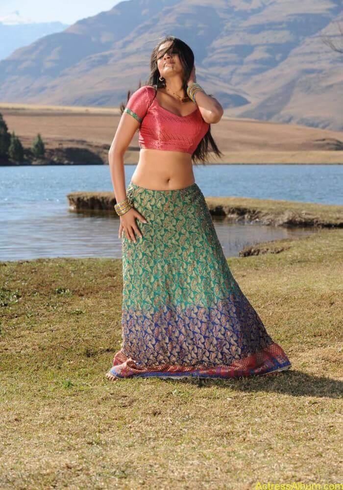 priyamani-latest-hot-exposing-navel (6)