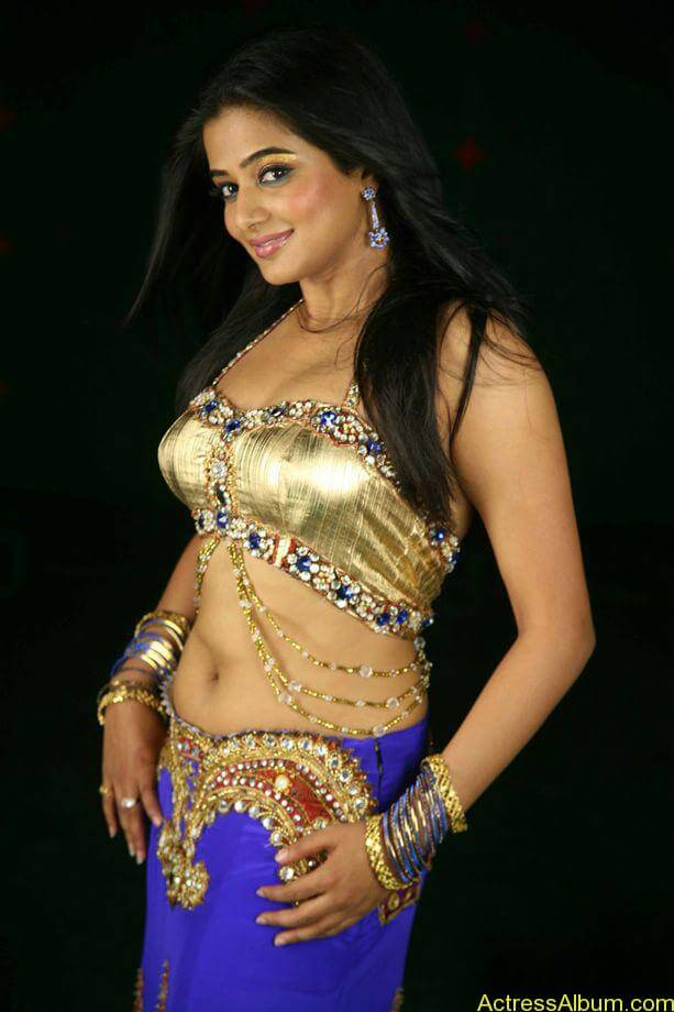 priyamani_latest_photo_gallery (7)