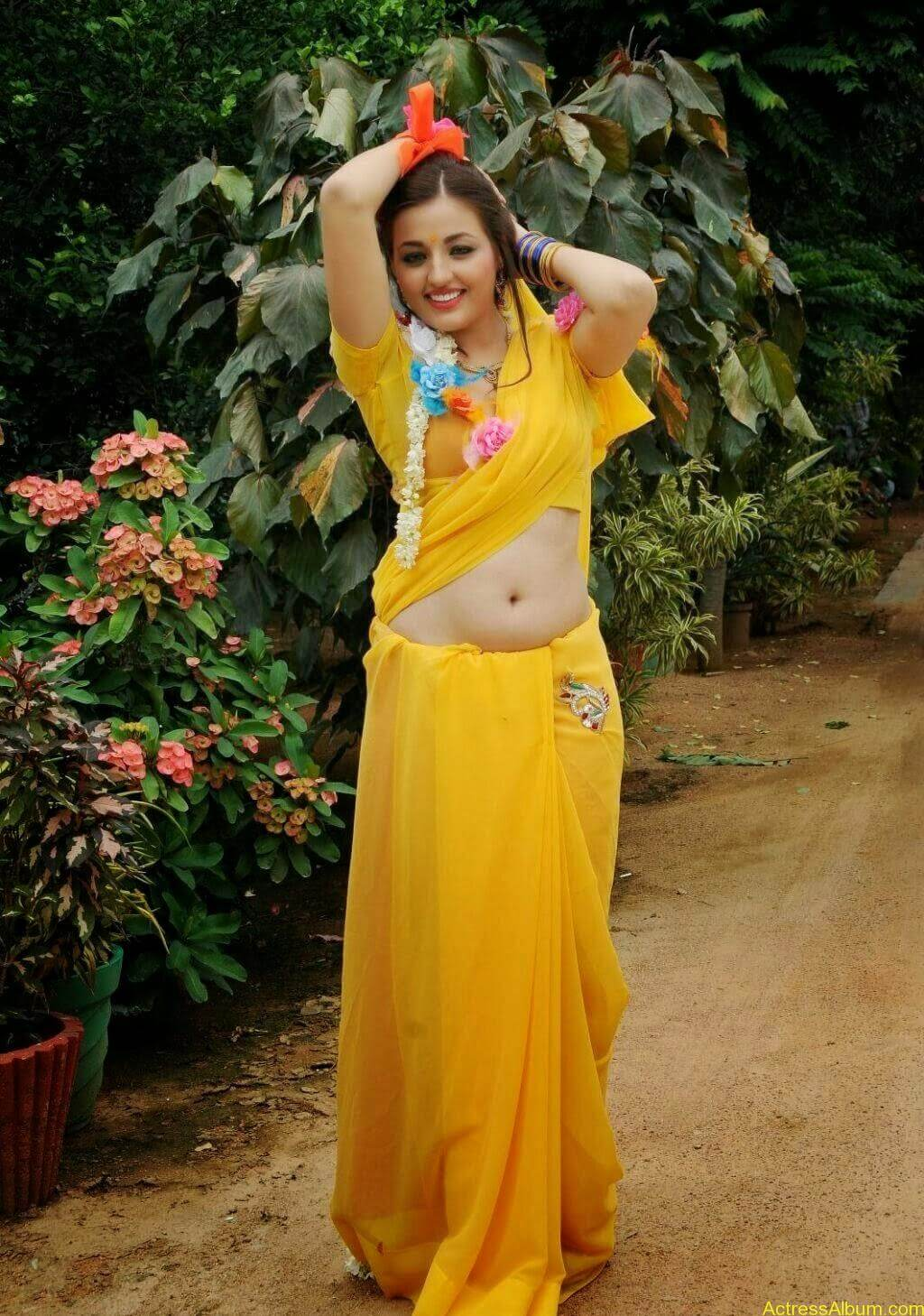 Sana Oberoi Hot Navel Show in Yellow Saree Spicy Photos South Actress